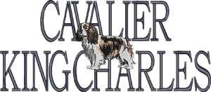 Cavalier King Charles Toy Dog Embroidered Sweatshirt Sm Med L XL 2XL