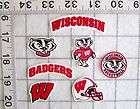 Wisconsin Badgers Logo Iron patch