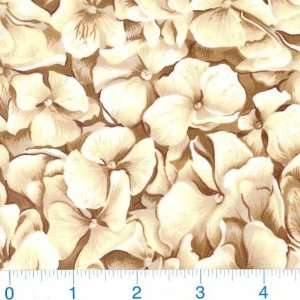 45 Wide In Full Bloom Flowers Natural/Cocoa Fabric By