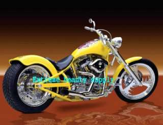 American Ultimate Custom Hot Rides HARLEY DAVIDSON MOTORCYCLES 2012