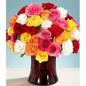 36 Rainbow Roses  Grocery & Gourmet Food