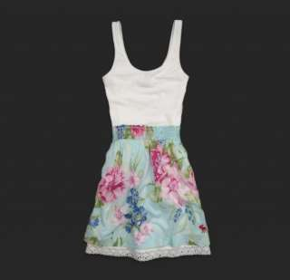 ABERCROMBIE WOMENS DRESS Mary BLUE Pink Floral $68 DRESS New so cute