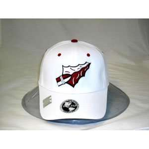 com Florida State Seminoles One Fit NCAA Cotton Twill Flex Cap Logo