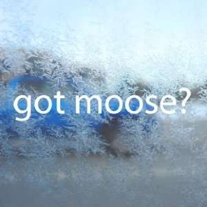 Got Moose? White Decal Hunt Hunting Elk Antlers Car White