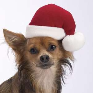 Dog Holiday Santa Hat   Pet Christmas Santa Hat   Medium