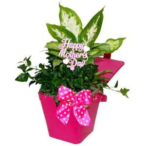 Mothers Day Gift Purse Patio, Lawn & Garden