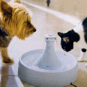 Drinkwell 360 Degree Free Fall Dog Cat Water Fountain