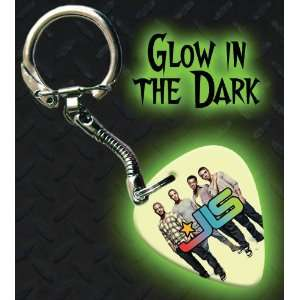 JLS Glow In The Dark Premium Guitar Pick Keyring Musical
