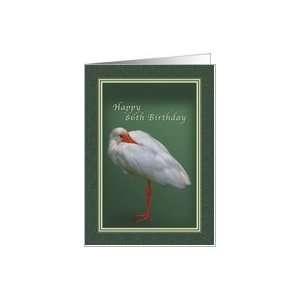 Birthday 86th, White Ibis Bird Card Toys & Games