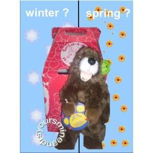 Build a Bear Workshop Limited Edition 2007 Ground Hog Toys & Games