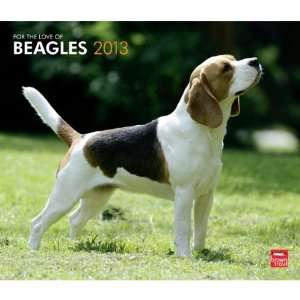 For the Love of Beagles 2013 Deluxe Wall Calendar 14 X 12