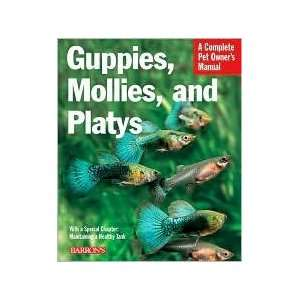 Guppies, Mollies, and Platys: Everything about Purchase, Care
