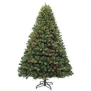 Franklin Pine With Multi color Lights  Seasonal Christmas Trees
