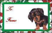 12 Smooth Dachshund Puppy Dog Christmas Gift Tags
