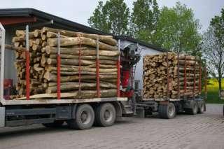 Brennholz zum selber machen, 42 Rm inkl. Transport und Steuer. in
