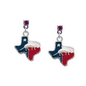 Texas   Armadillo Hot Pink Swarovski Post Charm Earrings