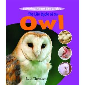 The Life Cycle of an Owl (Learning About Life Cycles